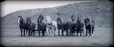 Sorensen Family Draft Horses in Early Wyoming